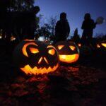 Хэллоуин в Ботаническом саду Праги