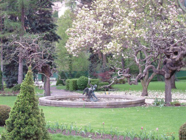 Цветущая Прага весной